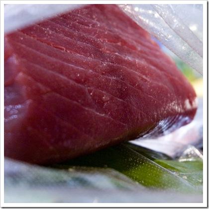 cucinare il tonno fresco