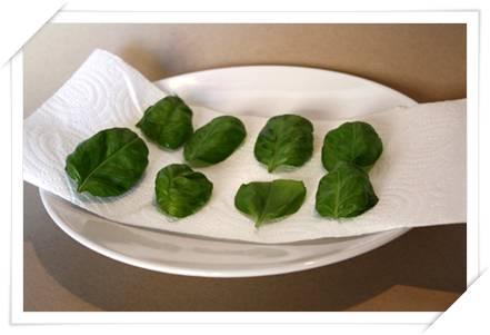 Come essiccare le erbe aromatiche con il microonde